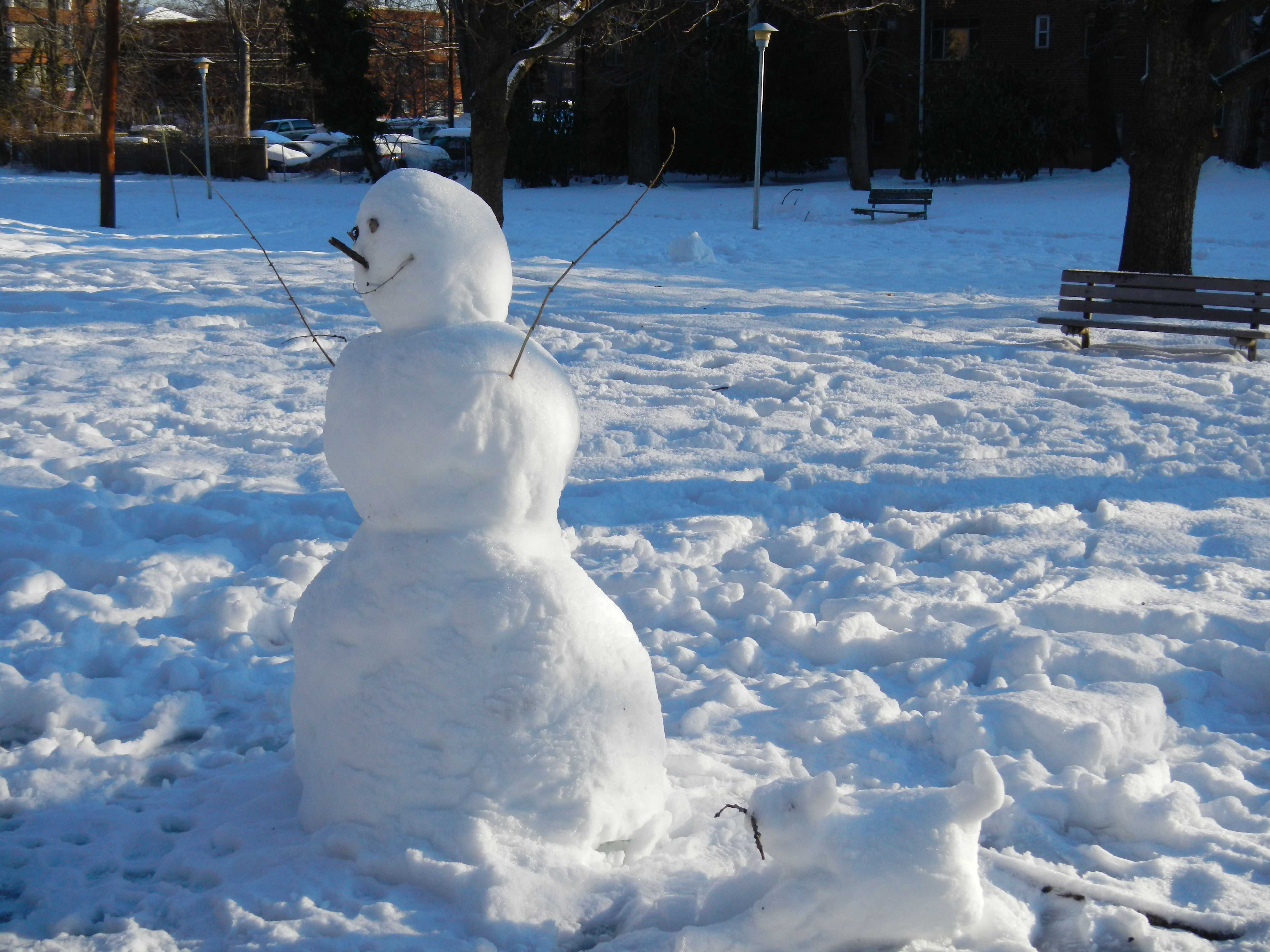 Snowman and Snowdog - Copy
